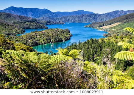 New Zealand Queen Stock photo © Stocksnapper