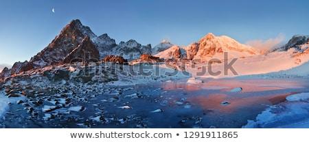 Chalet élevé Slovaquie montagne Voyage bâtiments Photo stock © phbcz