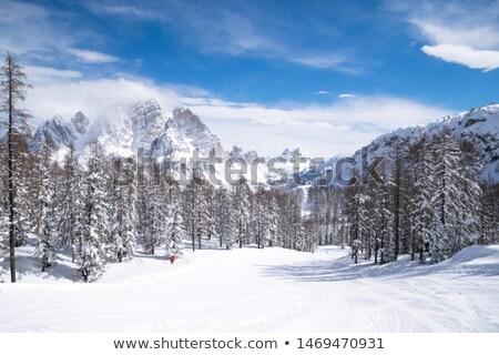 Yaz manzara alpine bulutlar bahar Stok fotoğraf © Antonio-S