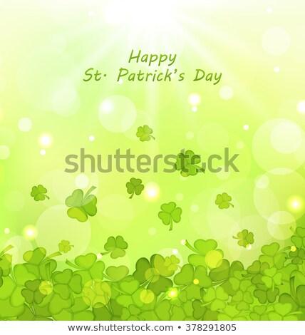 shining green trefoil Stock photo © marinini