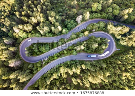 Twisted Highways Stock photo © Lightsource