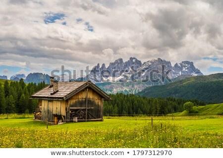 Emelkedő égbolt fű tájkép nyár kék Stock fotó © Antonio-S