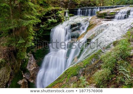 Vízesés hegyek délnyugat Lengyelország Európa fa Stock fotó © rafalstachura
