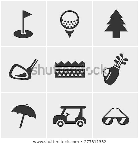 вектора икона гольф мяча Сток-фото © zzve