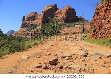 colorado rugged terrain stock photo © pixelsaway