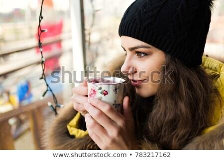 Belo feliz mulher jovem peludo inverno seis Foto stock © stryjek