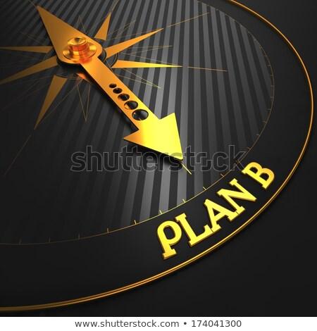 B-terv fekete arany iránytű tű mező Stock fotó © tashatuvango