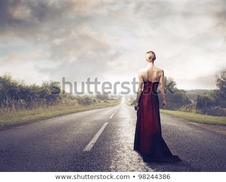 vrouw · zwart · haar · elegante · bruin · jurk · geïsoleerd - stockfoto © konradbak