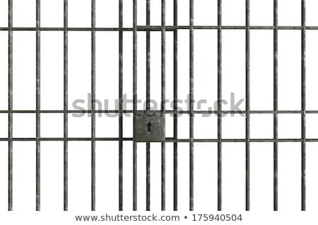 iron steal bars stock photo © meinzahn
