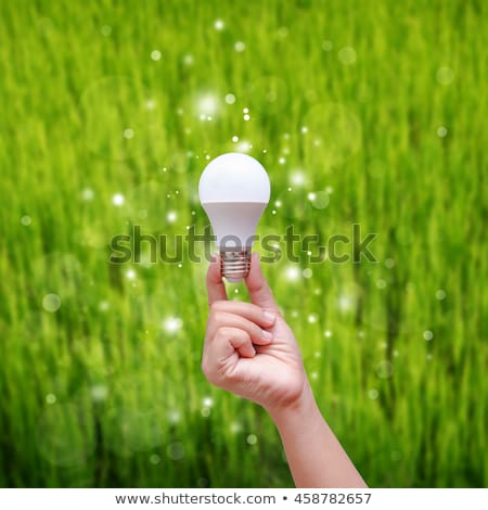 LED bulb in hand Stock photo © ifeelstock