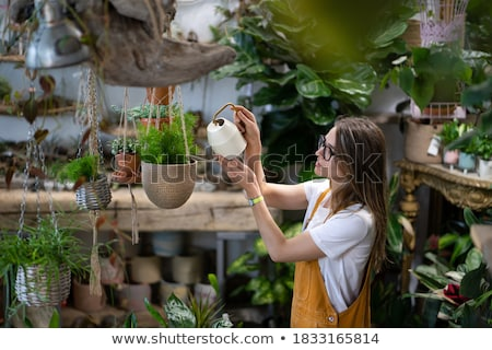 florist woman working with flowers and plants at garden stock photo © hasloo