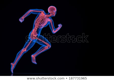 Running skeleton. Contains clipping path. Stock photo © Kirill_M