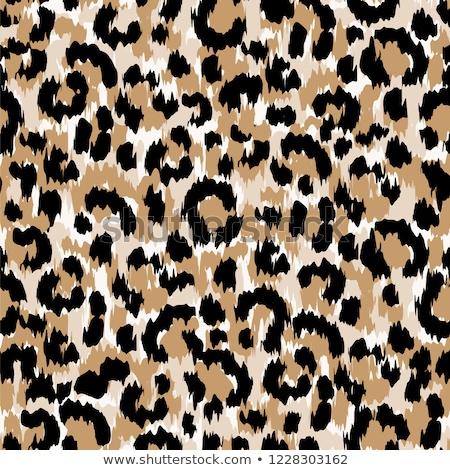 ヒョウ 抽象的な デザイン 芸術 ファブリック ストックフォト © gladiolus