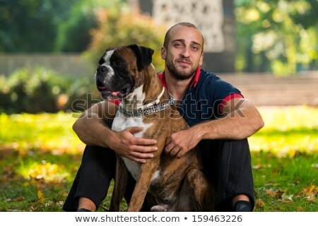 Man And His German Boxer Stock photo © Jasminko
