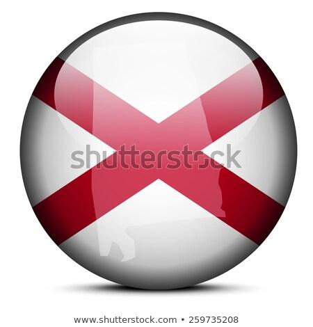 harita · bayrak · düğme · ABD · Washington · vektör - stok fotoğraf © istanbul2009