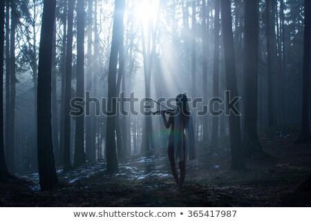 Romantik kız oynama viyolonsel beyaz Stok fotoğraf © Elisanth