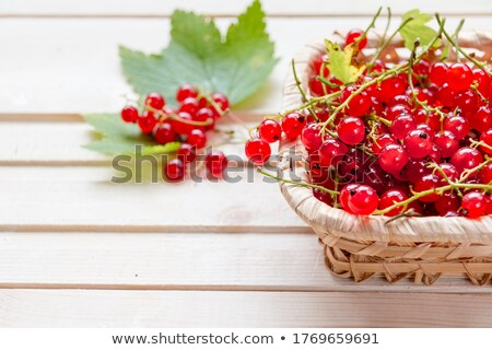 Basket with fresh red currants Stock photo © BarbaraNeveu
