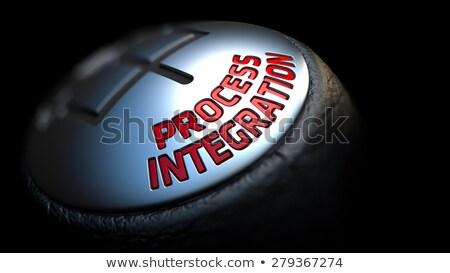 プロセス 統合 黒 ギア 赤 文字 ストックフォト © tashatuvango