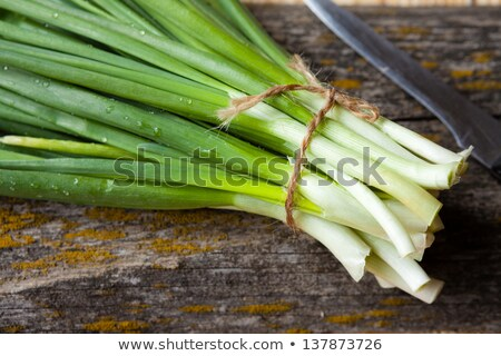 Onion and spring onions on wooden board Stock photo © MartinsK