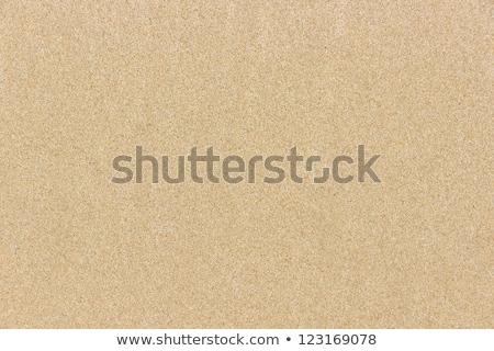 Seamless yellow sand flat surface texture. Stock photo © tuulijumala
