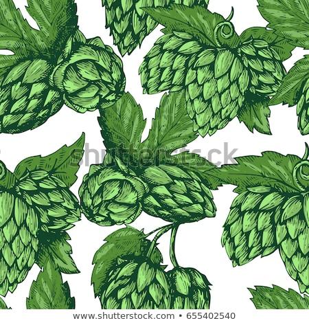 bier · geïsoleerd · icon · cartoon · stijl · brouwerij - stockfoto © netkov1