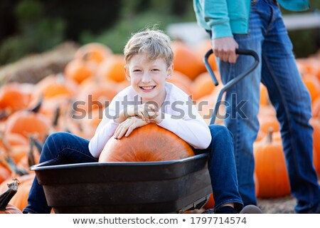 Stock photo: Boy sittingn in market wagon