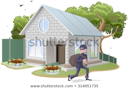 Robber in mask carries bag. Thief robs house. Property insurance Stock photo © orensila