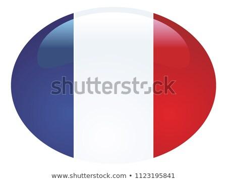 Fransız bayrak oval düğme gümüş yalıtılmış Stok fotoğraf © Bigalbaloo