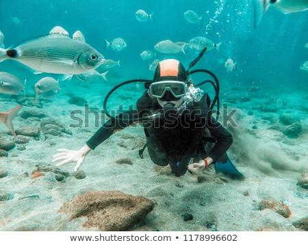 girl diving stock photo © adrenalina