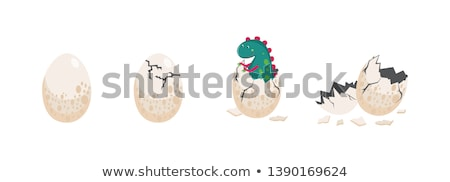 An egg hatching Stock photo © bluering