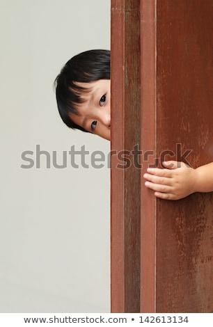Twee aziaten kinderen illustratie meisje Stockfoto © bluering