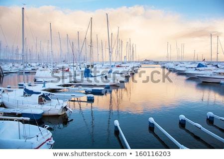 Naturale porto barche inverno congelato acqua Foto d'archivio © Klinker