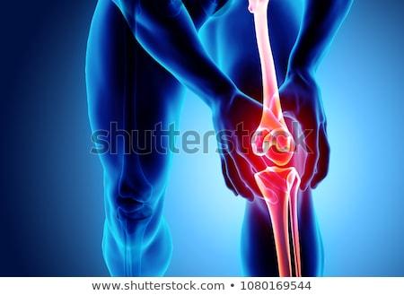колено нормальный совместный изолированный белый здоровья Сток-фото © Tefi