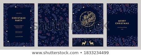 karácsony · vektor · hópehely · koszorú · terv · kék - stock fotó © olgaaltunina