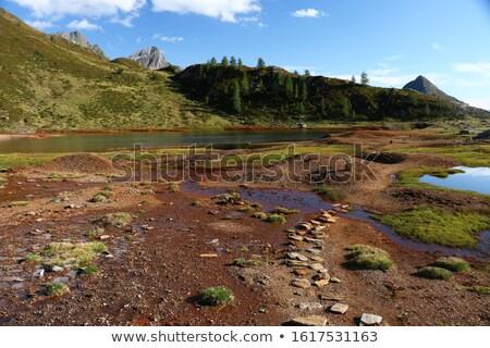 Muddy lake Stock photo © raywoo