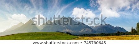 Meadow with mountain peak Stock photo © ldambies