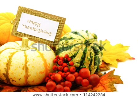 Feliz acción de gracias vegetales producir signo frutas Foto stock © Krisdog