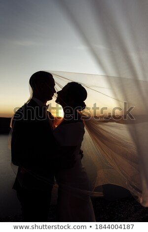 Woman under veil on beach Stock photo © IS2