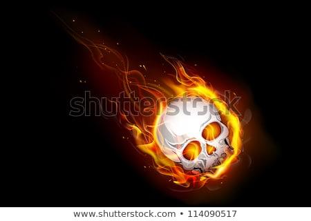 tűz · égő · lángoló · koponya · agancs · sötét - stock fotó © zven0
