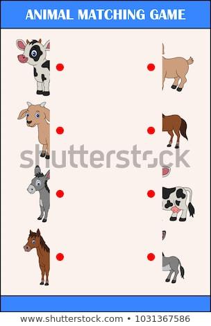 match halves of animal pictures educational game stock photo © izakowski