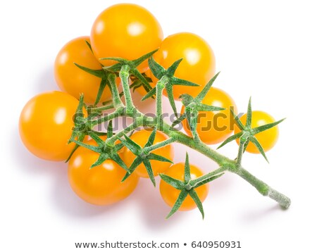 Yellow, red cherry tomatoes, top view, paths Stock photo © maxsol7