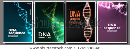 Dna Poster Set Vector. Biotechnology Concept. Science Background. Strand, Sequence. Chemistry Cover. Stock photo © pikepicture