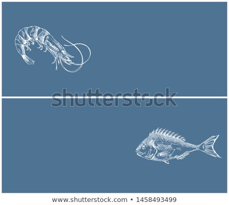 Shrimp and Bream Marine Products Landing Page Stock photo © robuart