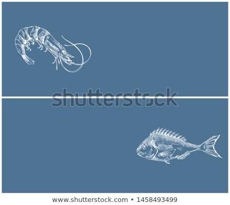 Garnalen mariene producten landing pagina vector Stockfoto © robuart