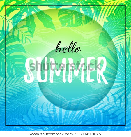 summertime banner frame for text green palm tree stock photo © robuart