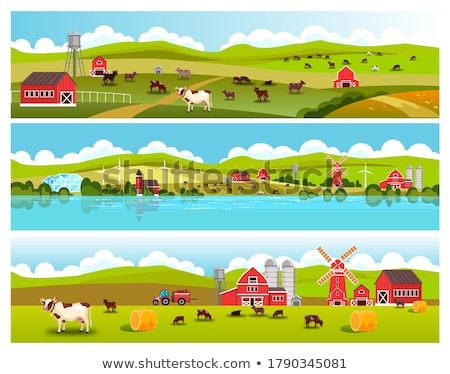 Barn and Water Tower Building Illustration Set Stock photo © robuart