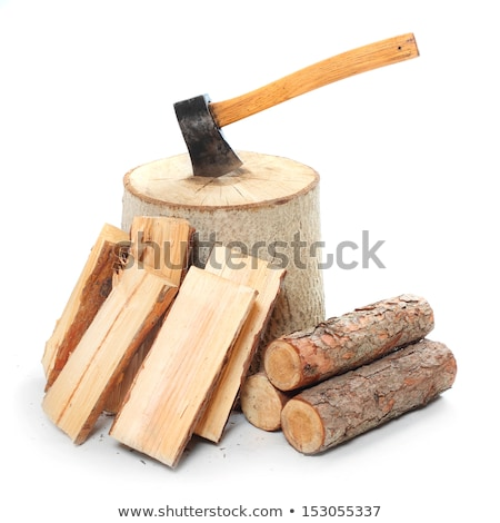 Lumber jack chopping wood in the forest Stock photo © colematt