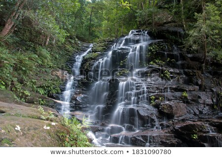 Sylvia Falls Blue Mountains Stock photo © lovleah