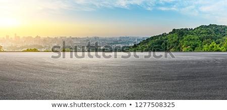 empty road to the city stock photo © colematt