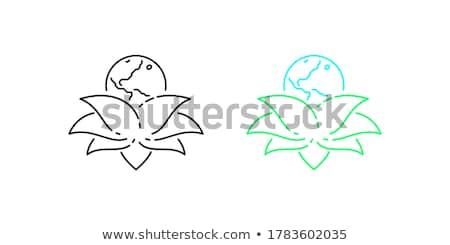 mapie · świata · eco · ikona · domu · strony · Motyl - zdjęcia stock © cienpies